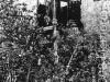 mem205Torretta di guardia in un lager abbandonato. Salechard-Igarka, 1989