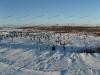 Cimitero Yurshorskij nella tundra (vicino a Promyshlennyj)