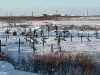 7049 Cimitero Yurshorskij nella tundra