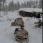 S-ibernati. Parole in viaggio nel gelo della Siberia di Daniele Castiglioni